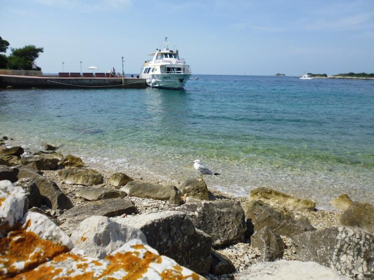 Red Island - Marina